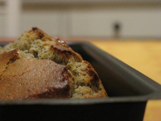 Cake Sans Beurre Au Pavot